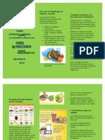 Lonchera Escolar y Nutricion Infantil