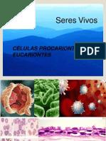 Microorganismos (2)