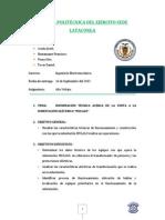 Informe Final Mulalo