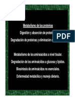 Metabolismo de Proteinas Tema IIb