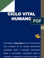 3. El Ciclo Vital Humano