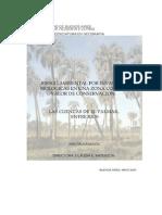 Riesgo Ambiental por invasiones biologicas en una zona con alto valor de Conservacion, Las Cuencas del Palmar, Entre Rios