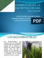 Los Biocombustibles Pifi 2013-02
