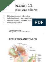 Leccic3b3n 11 Cirugia Vias Biliares