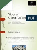 Presentacion Tribunal Constitucional