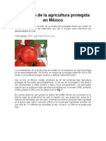 Panorama de la agricultura protegida en México.doc