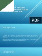 ENSEÑANZA DE LA BIOINFORMÁTICA UTILIZANDO PROGRAMACION ESTRUCTURADA PARA EL ANALISIS DE DNA