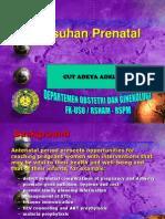 2. Asuhan Prenatal