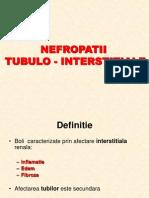 2012 - 2013 NTI ac si cr