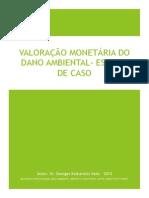VALORAÇÃO MONETÁRIA DO DANO AMBIENTAL - ESTUDO DE CASO