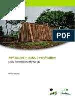 Key Issues in REDD+ Verification