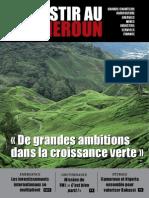 Investir Au Cameroun 3