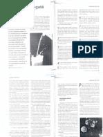 Despre Grasimi Si Colesterol - Articole Din Revista Familia Ortodoxa 2011