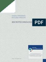 1337 Barzdenas, Navickas Microtechnologies Web