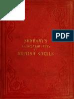Illustrated+Index+Shells