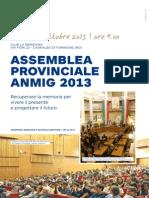 locandina assemblea 2013