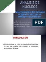 ANÁLISIS DE NÚCLEOS Exposicion Volumetria2