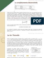 escoamento completamente desenvolvido.pdf