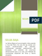 Selva Baja