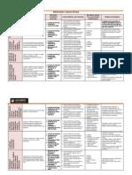 Procesos Cognitivos[Evaluación] (1) (1)