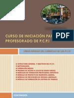 2 Lineas Basicas Del Curriculo de Los Pcpi (1)