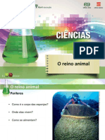 Ciencias7 o Reino Animal