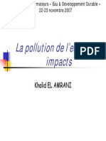 Pollution Impacts