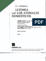 Anatomia+de+Los+Animales+Domesticos(Robert+Getty(Tomo+1))[1]