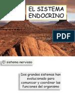 07elsistemaendocrino-120615012846-phpapp02[2]