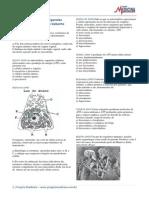 Biologia Citologia Organelas Citoplasmaticas Exercicios Gabaritos