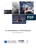 Introduction to Well Integrity
