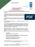 Solicitud de Consultoria 92 2013