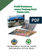 Profil Puskesmas Tanjung Satai 2012 _EBOOK