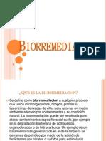 biorremediacion-130424163439-phpapp02
