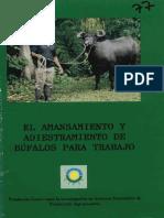 Bufalos Para Trabajo