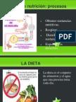 La nutrición y la dieta por Abril y Alma
