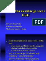 02) Ritmična ekscitacija srca i EKG sve sto treba za ispita