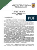 Raport Anual 2012 Prof (1)