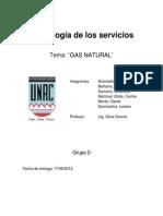 Informe de Gas Natural