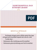 kortikobulbar dan kortikospinal
