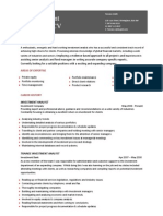 Investment Analyst CV Template