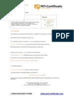 Linguapuncture 10 Primer Condicional