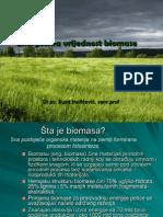Energetska Vrijednost Biomase - I Dio