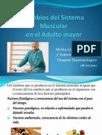 Cambios Del Sistema Muscular