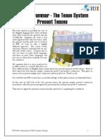 Unit 4 - Present Tenses