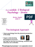 As Stress Lessons 1 and 2 Definitons of Stress