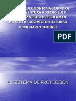 Sistema de Proteccion
