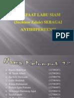 Manfaat Labu Siam (Sechium Edule)