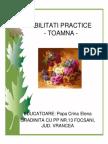 Abilitati Practice- Toamna