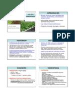 CULTIVO HIDROPÔNICO.pdf